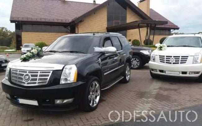 Аренда Cadillac Escalade на свадьбу Одесса
